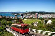 New Zealand - Erikas Travel Tips